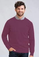 William Lockie Gordon Mens Geelong Lambswool Crew neck pullover